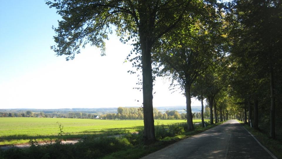 """""""Deutsche Alleenstrasse"""" Dortmund-Soest"""